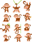 Set,Animal,Cute,Ape,Monkey,...