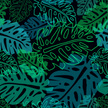 Tropical Climate,Pattern,Ba...