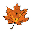 Canada,Halloween,Maple Leaf...