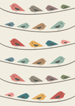 Sparrow,Pattern,Repetition,...