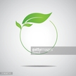 Shadow,Vector,Leaf,Plant,Organic,Symbol,Illustration,Environment,Nature,No People,Green Color
