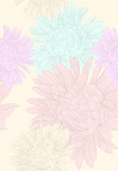 Pattern,Flower,Daisy,Backgr...