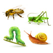 Icon Set,Caterpillar,Concep...