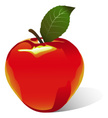 Apple - Fruit,Red,Ilustrati...