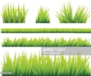 Green Color,Grass,Illustrat...