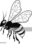 Insect,Vector,Honey Bee,Ill...