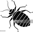 Insect,Black Color,Vector,B...