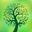 Tree,Healthy Lifestyle,Heal...