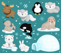 Igloo,Seal - Animal,Animal,...