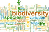 Word Cloud,Biodiversity,Ani...