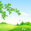 Nature,Square,Outdoors,Drawing - Art Product,Plant,Park - Man Made Space,Bird,Green Color,Robin,Flower,Bush,Tree,Lush Foliage,Sky,Branch,Leaf,Season,Twig,Cloud - Sky,Springtime,Summer,Landscape,Hill,Day,Rolling Landscape,Meadow,Woodland,Forest,Scenics,Grass,Illustration,Cartoon,No People,Non-Urban Scene,Vector,2015,Robin,Clip Art,Bush