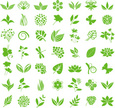 Flowerbed,Environmental Conservation,Grass,Chrysanthemum,Social Issues,Natural Pattern,Icon Set,Season,Outdoors,Poppy - Plant,Single Flower,Rowanberry,Violet - Flower,Design Element,Vector,Hibiscus,Leaf,Growth,Plant,Herbal Medicine,Uncultivated,Dahlia,Bluebell,Flower,Blossom,Aster,Silhouette,Corn On The Cob,Summer,Dragonfly,Butterfly - Insect,Botany,Floral Pattern,Dandelion,Ayurveda,Cereal Plant,Organic,Symbol,Chamomile,Illustration,Wheat,Lily,Beauty In Nature,Rose - Flower,Iris - Plant,Chamomile Plant,Nature,Celandine,Chicory,2015,No People,Herb,Springtime