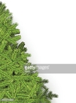 fir branches,Banner,Holiday...