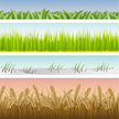 Wheat,Grass,Seamless,Vector...