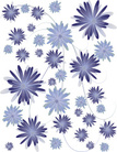Floral Pattern,Chrysanthemu...