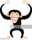 Monkey,Animal Wildlife,Anim...