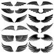 Wing,Sign,Vector,Feather,Sy...