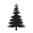 Silhouette,No People,Pine W...