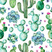 Watercolor Painting,Cactus,...