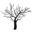 Tree Isolated,vector tree,t...