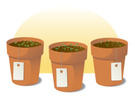 Flower Pot,Herb,Plant,Label...