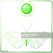 White Background,Insect,Ani...