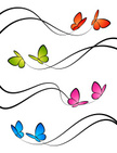 Butterfly - Insect,Design,V...