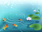 Pond,Water Lily,Water,Lily,...