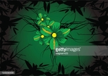 Nature,Green Color,Flower,B...