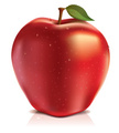 Apple - Fruit,Red,Vector,Fo...