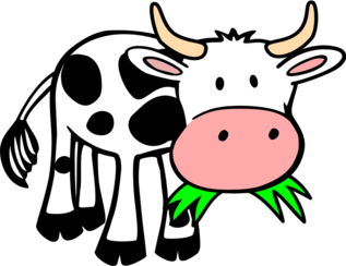 Grass-eating cow