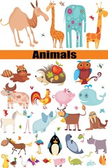 A Group Of Animals Was