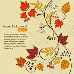 Hand-painted maple leaf background vector-1