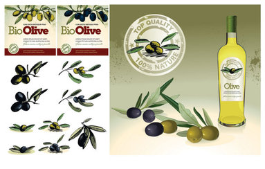 Theme Vector olive oil