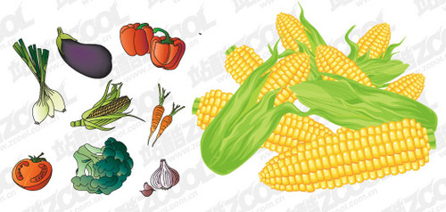 Common Fruits And Vegetables