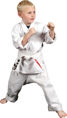 KARATE KID PSD