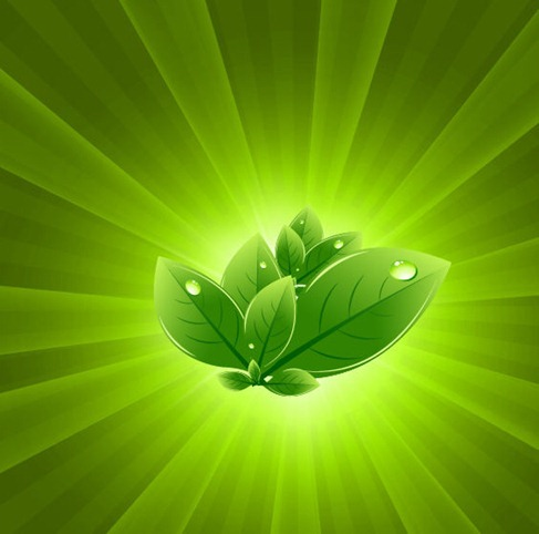 Leaves with Green Light Burst Vector Abstract Background