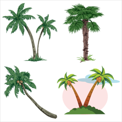 Vector Palms PSD