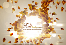 Fall Autumn Backgrounds