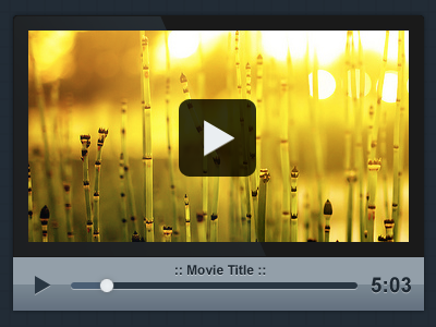 Custom PSD Video Player