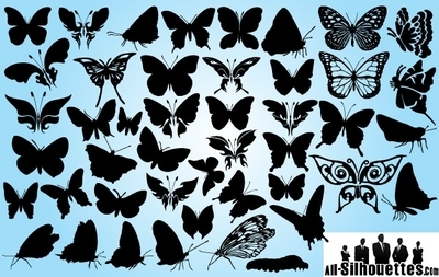 Butterfly Pack in Several Poses