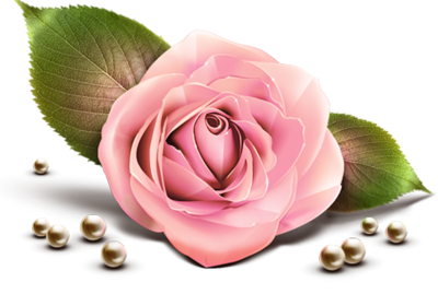 Pink Rose w/Pearls PSD