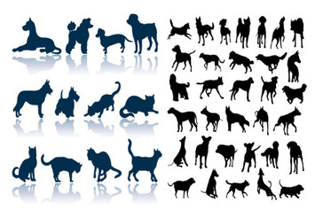 Cat dog silhouettes