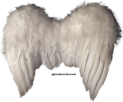 Angel Wings PSD