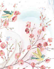 flowers and birds background