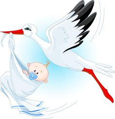 Stork Carrying A Baby