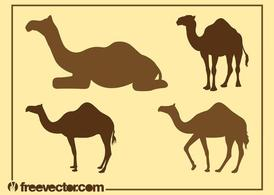 Camel Silhouettes Graphics