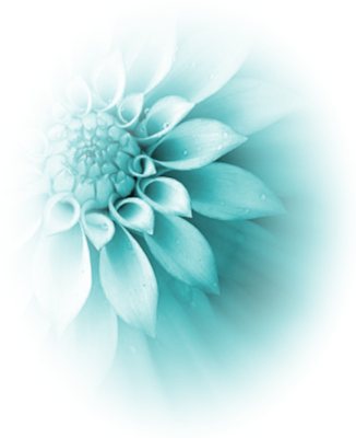 turquoise flower PSD