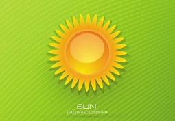Sun flower green background