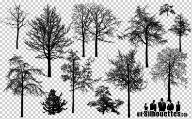 16 Vector naked trees